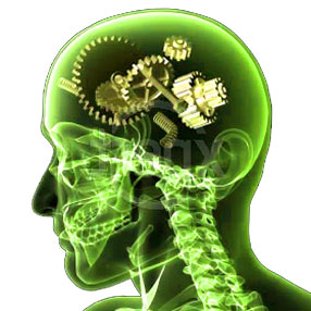 genes-enfermedad-mental