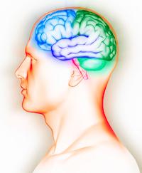 esclerosis-multiple1