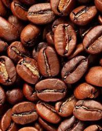 Consumir café es genético