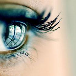Fabrican una retina a partir de células madre