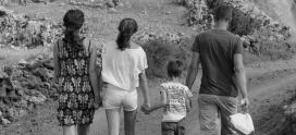 CITOGEN seleccionado por el Ministerio español como laboratorio realizador de pruebas de ADN para la reagrupación familiar